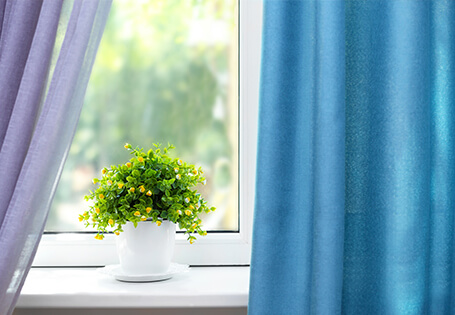 Online Interior Design Course | Window Boss - Plant